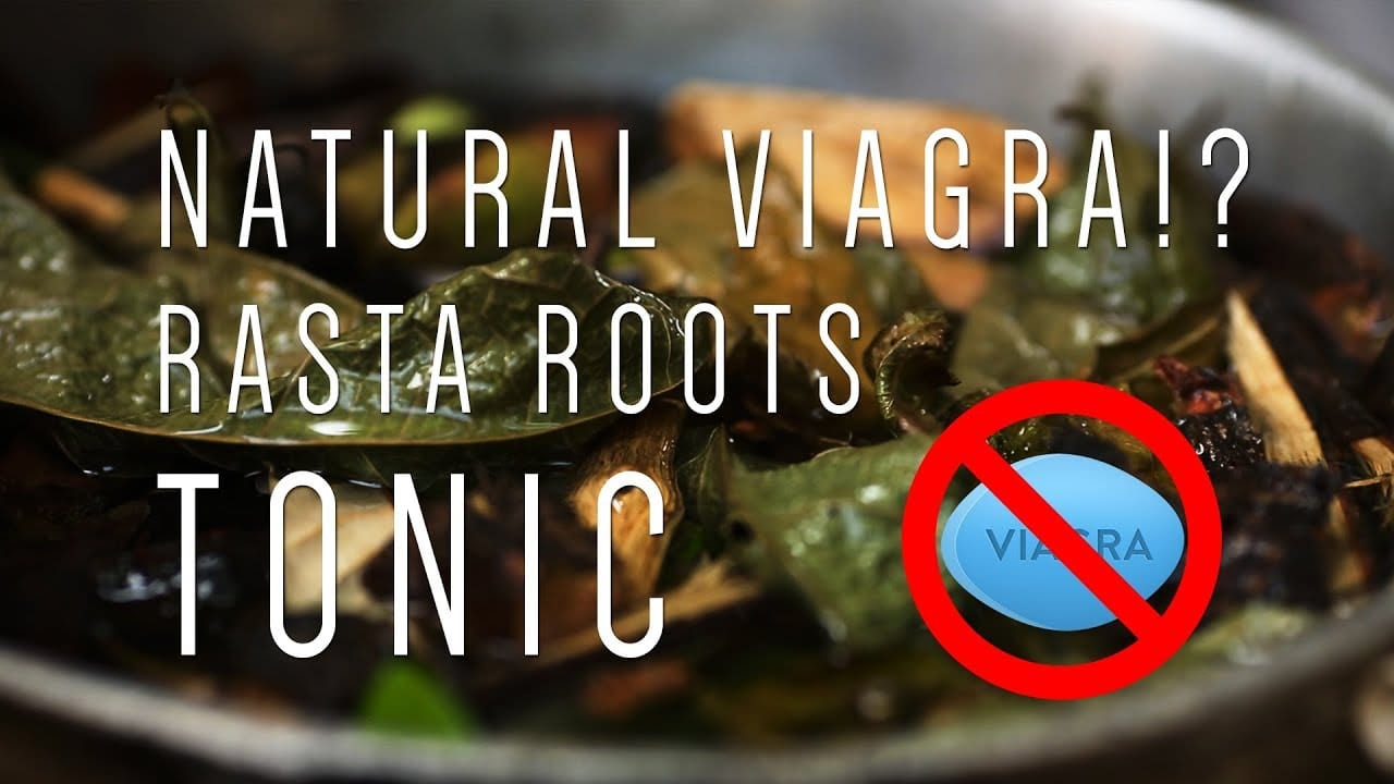 natural viagra how to make rasta roots tonic video. Black Bedroom Furniture Sets. Home Design Ideas