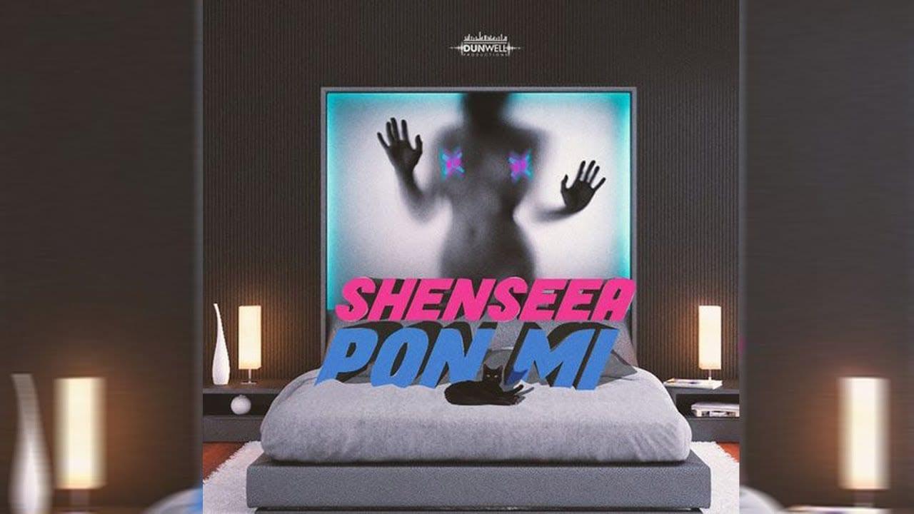 Photo of Shenseea – Pon Mi