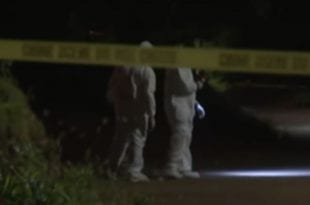 dead yellow tape bush body found killed crime scene