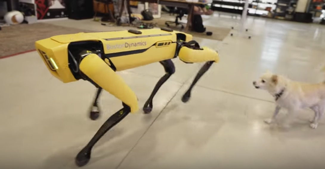 Photo of This Robot Dog Costs $75,000USD [Video]